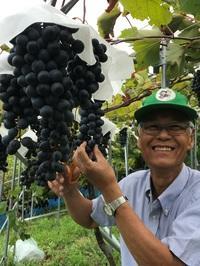 大阪ワインの苦難の歩みと地域資源を生かした未来への取り組み